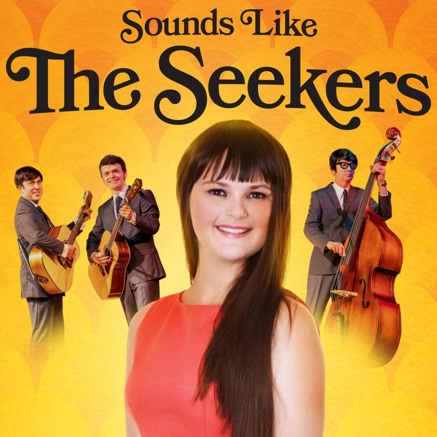 Sounds Like the Seekers